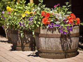 barrels-in-garden-with-flowers_s4x3_al
