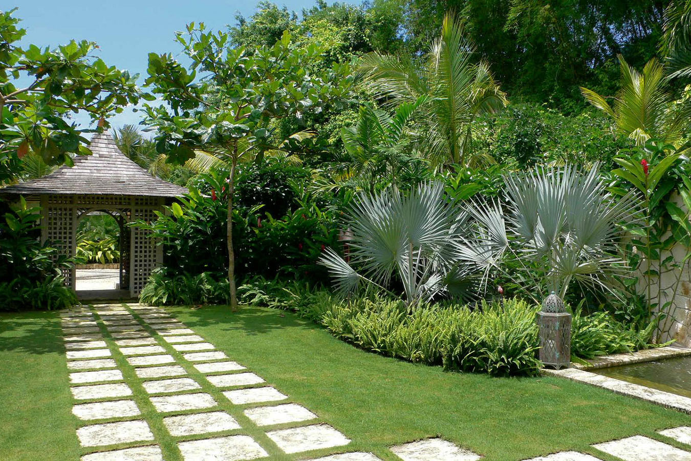 Trees eden garden centre for Garden trees b q