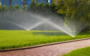 lawn watering 1